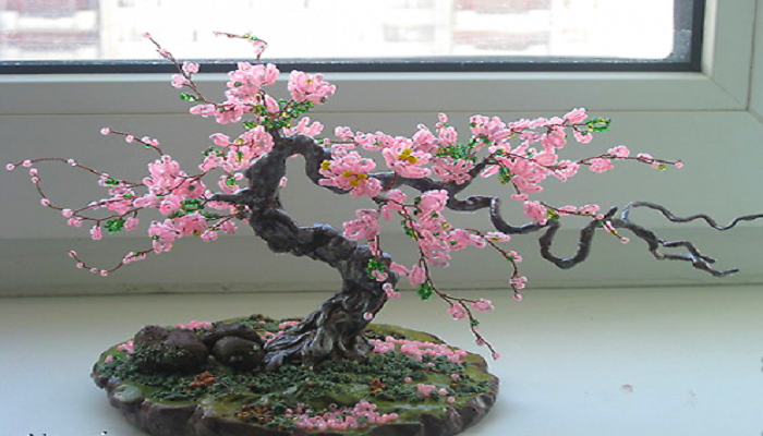 Bonsai Artificial Todo Sobre Los Bonsai