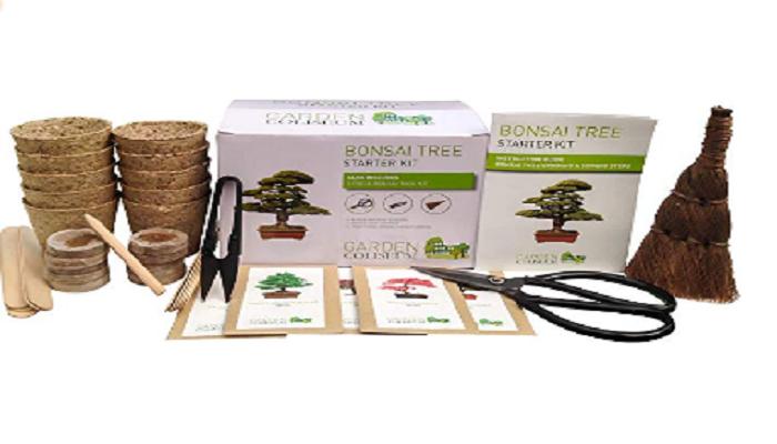 materiales para hacer un bonsai tanuki