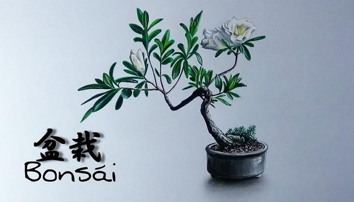 dibujo bonsai con flores